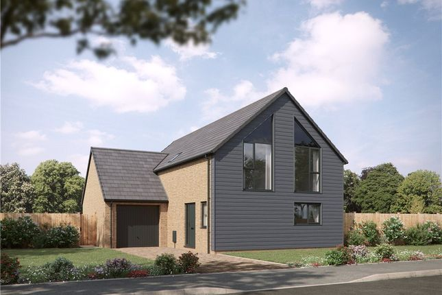 Thumbnail Detached house for sale in Palmers Meadow, Bridport, Dorset