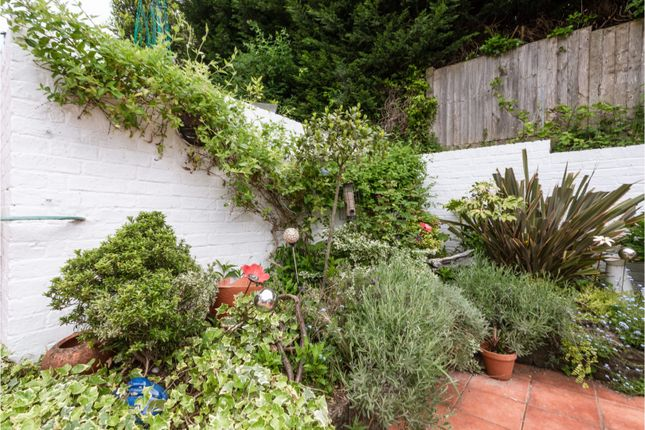 Rear Garden of Shirley Drive, Hove BN3