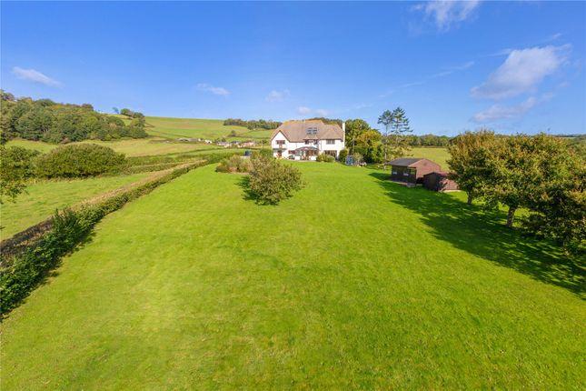 Gardens of Northleigh, Colyton, Devon EX24