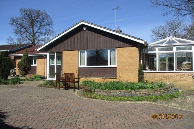Thumbnail Bungalow to rent in Peterborough Avenue, Oakham
