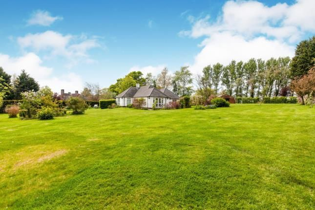 Thumbnail Equestrian property for sale in Straight Mile, Etchingham, East Sussex, .