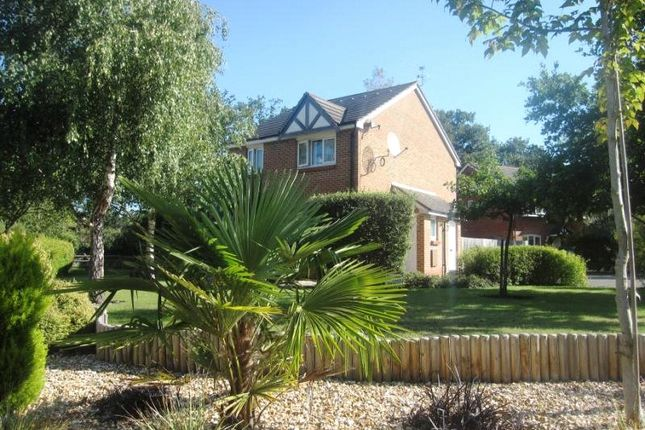 Thumbnail Semi-detached house for sale in Haining Gardens, Mytchett, Camberley, Surrey