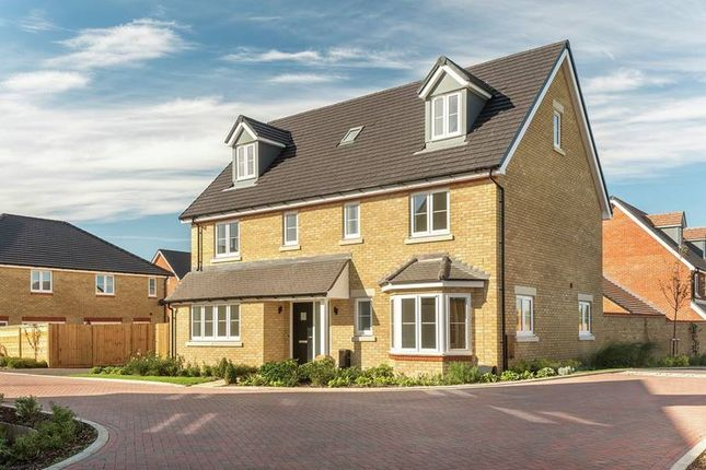 "Thumbnail Detached house for sale in ""The Wittering"" at Shopwhyke Road, Chichester"