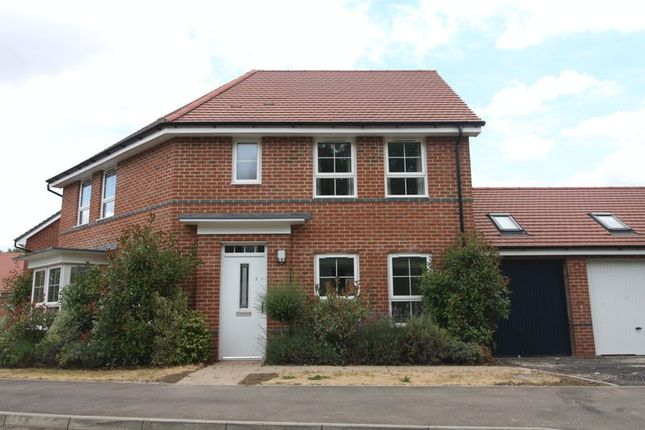 Thumbnail Detached house to rent in Argus Gardens, Hemel Hempstead