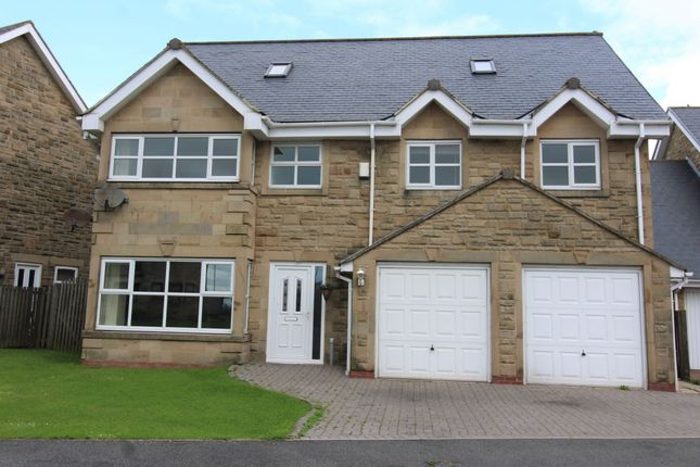 Thumbnail Detached house for sale in The Paddock, Sunniside, Bishop Auckland