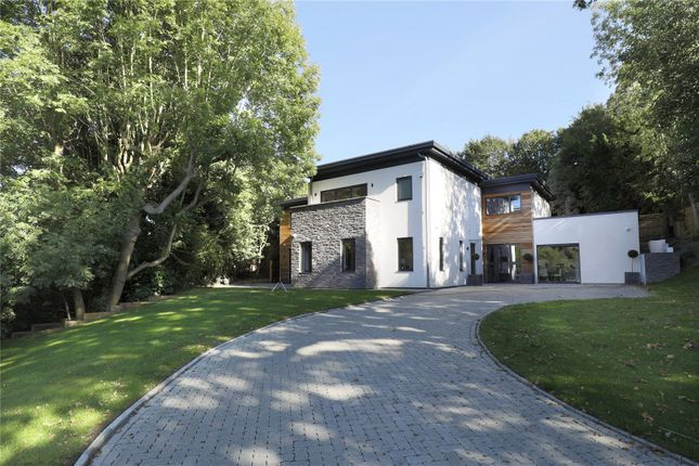 Thumbnail Detached house for sale in Deepdale, Wimbledon, London