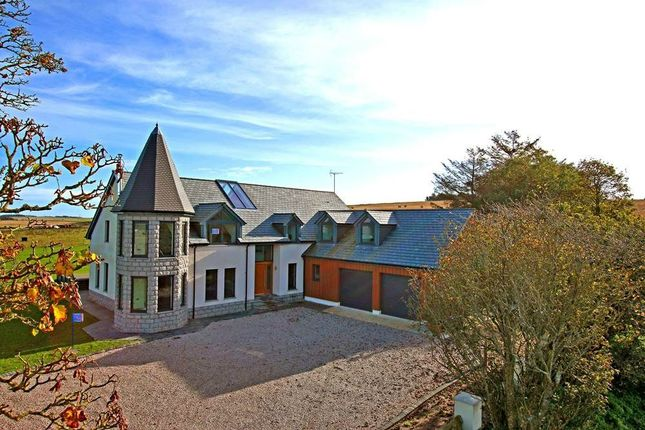 Thumbnail Detached house for sale in Red Bog Farm, Longside, Peterhead, Aberdeenshire
