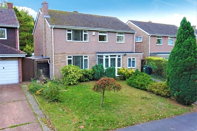 Thumbnail Detached house for sale in Delius Crescent, Broadfields, Exeter, Devon
