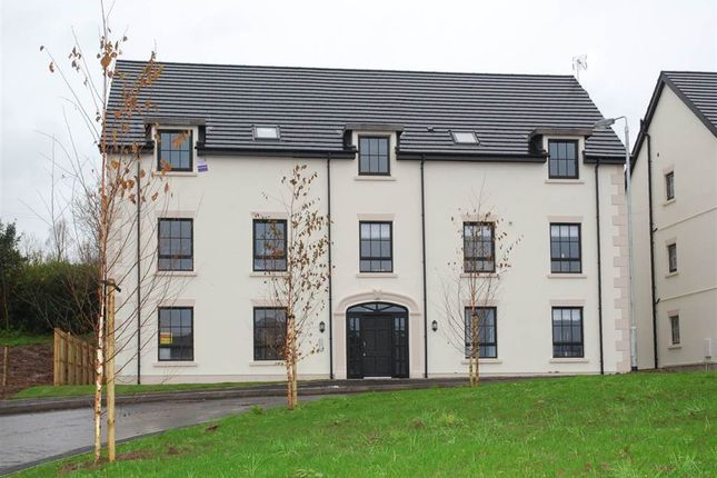 Thumbnail Flat to rent in 18, Fountain Mews, Lisburn