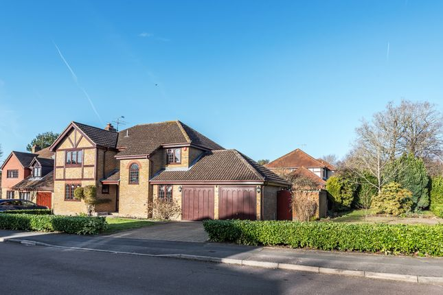 Thumbnail Detached house to rent in Manor Park Drive, Finchampstead, Wokingham