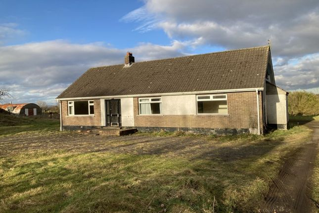 Thumbnail Bungalow for sale in Front Road, Drumbo, Lisburn
