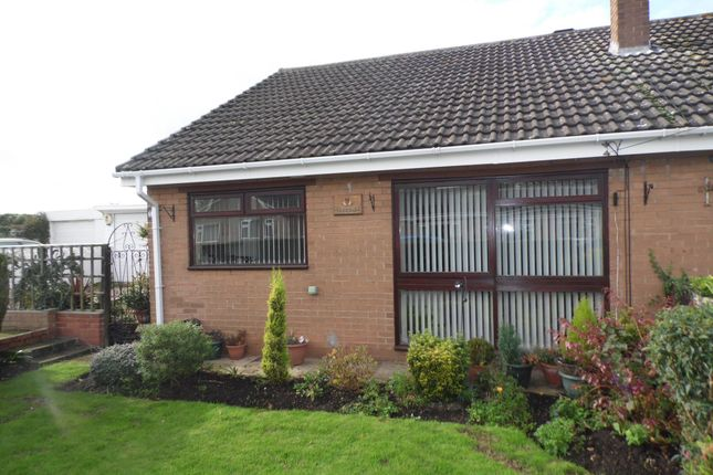 Thumbnail Bungalow to rent in Fir Tree Drive, Norton, Doncaster