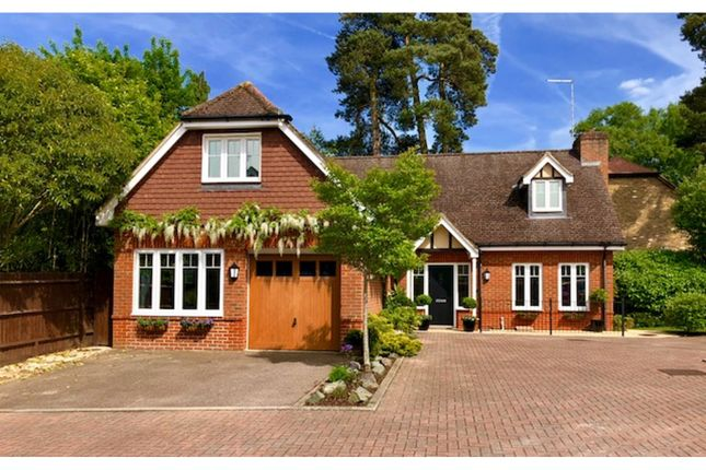 Thumbnail Detached house for sale in Sandy Close, Crawley Down
