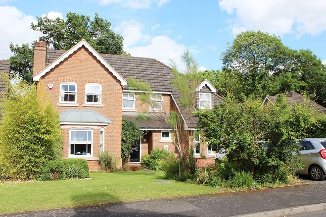 Thumbnail Detached house for sale in Swift Close, Kenilworth