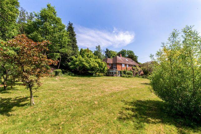 Thumbnail Detached house for sale in Malthouse Lane, Hambledon, Godalming, Surrey