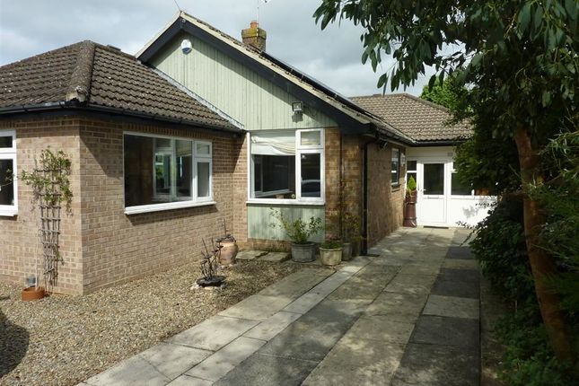 Thumbnail Semi-detached bungalow to rent in Meadow Close, Harrogate, North Yorkshire