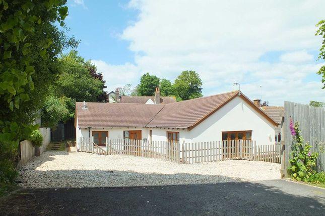 Thumbnail Detached bungalow for sale in Fremington Road, Seaton