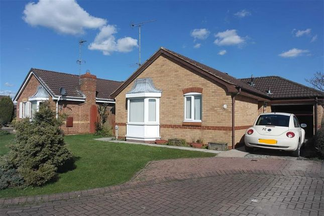 Thumbnail Bungalow to rent in Sussex Close, Priory Road, Hull