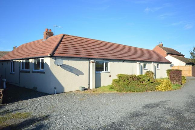 Thumbnail Detached bungalow to rent in Main Street, Irton Scarborough, North Yorkshire