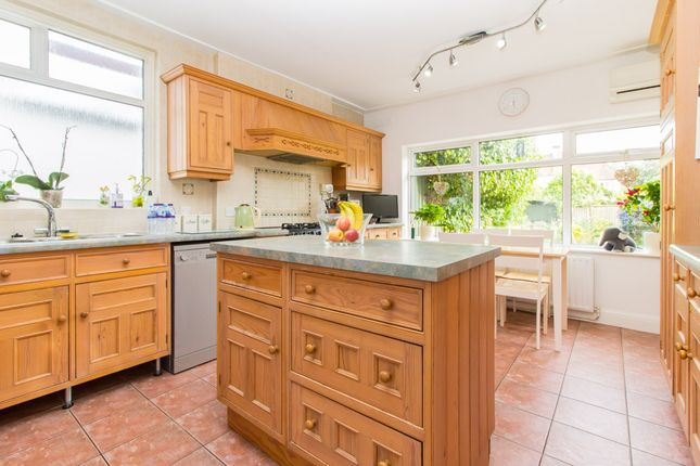 Thumbnail Detached house for sale in Elm Grove, Thorpe Bay