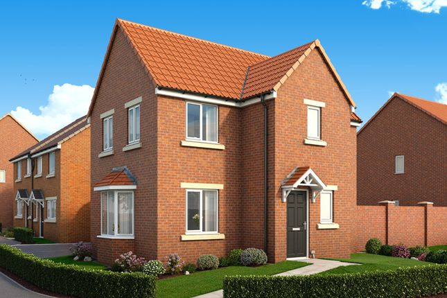 """Thumbnail Property for sale in """"The Mulberry"""" at St. Marys Terrace, Coxhoe, Durham"""