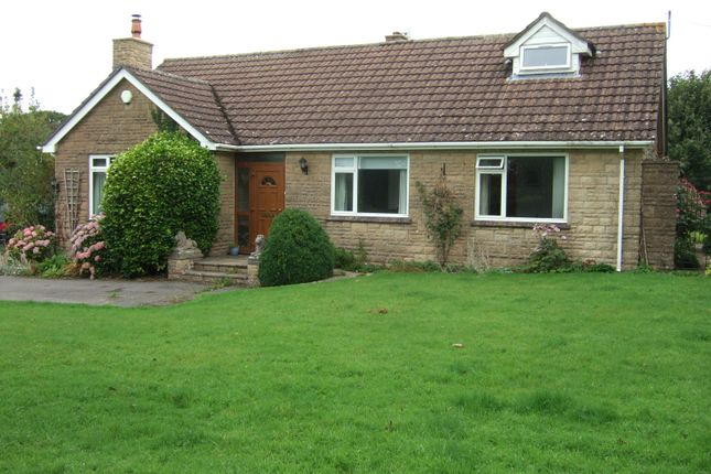 Thumbnail Detached bungalow to rent in Bridport Road, Drimpton, Beaminster