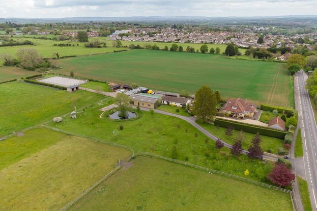 Thumbnail Detached house for sale in Winsley Road, Bradford-On-Avon, Wiltshire