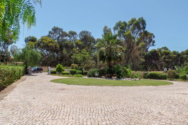 Driveway of Alvor, Portimão, Portugal