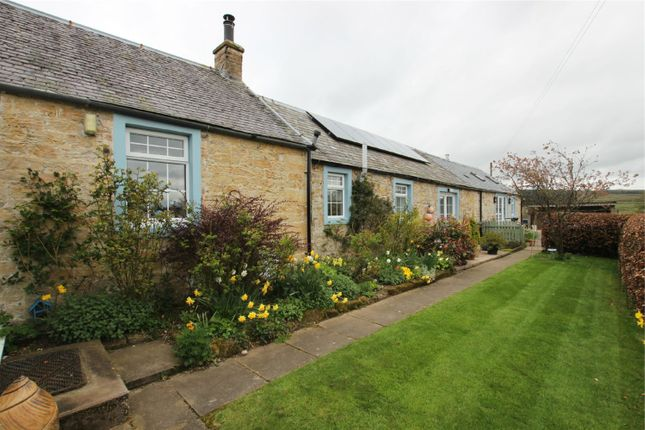 Thumbnail Detached house for sale in Harelawslack, Canonbie, Dumfriesshire