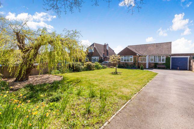 Thumbnail Detached bungalow for sale in Peelings Lane, Westham, Pevensey