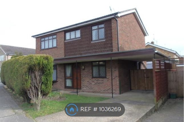 Thumbnail Detached house to rent in Tangerine Close Colchester, Colchester