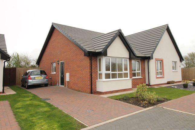 Thumbnail Semi-detached bungalow for sale in Sycamore Drive, Longtown, Carlisle