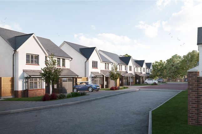 Pennant Homes At Colman Vale