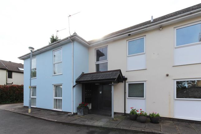 Thumbnail Flat to rent in Conway Road, Cardiff