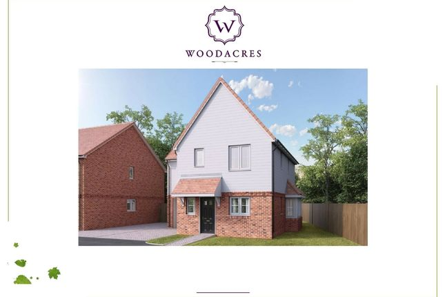 Thumbnail Detached house for sale in Woodacres Way, Arlington Road East, Hailsham