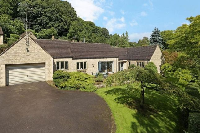 3 bed detached bungalow for sale in Sheepscombe, Stroud
