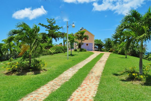 Driveway of Serendipity, Foster Hall Plantation, Barbados