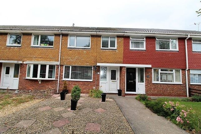 Thumbnail Terraced house to rent in Dunlin Drive, Blyth