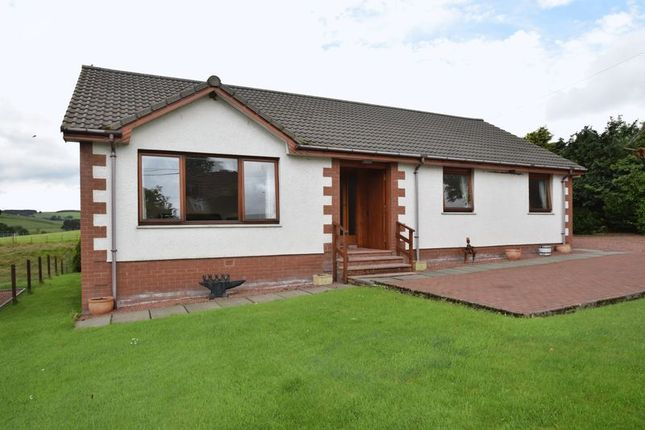 Thumbnail Detached bungalow for sale in Castlebrae, Millrig Road, Wiston, Biggar