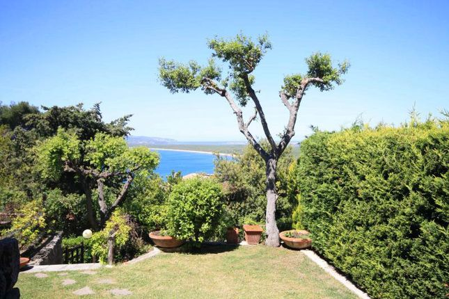 Thumbnail Detached house for sale in Ansedonia, Orbetello, Grosseto, Tuscany, Italy