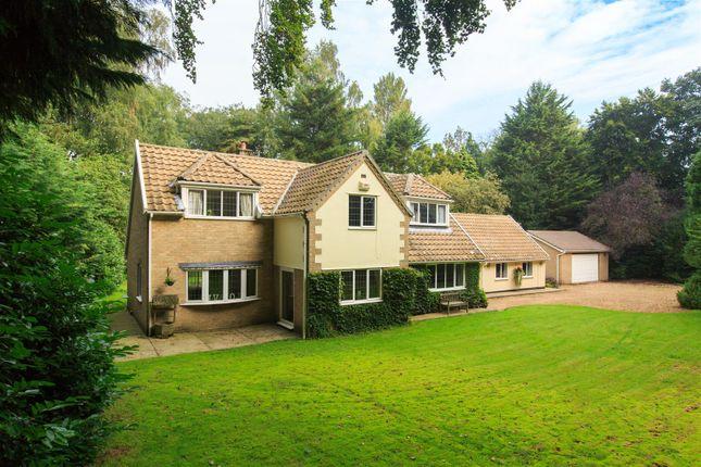 Thumbnail Detached house for sale in Old Buckenham, Attleborough