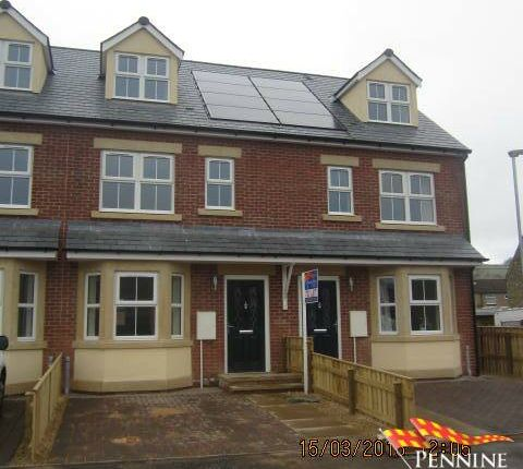 4 bed terraced house to rent in South Gables, Haydon Bridge, Northumberland