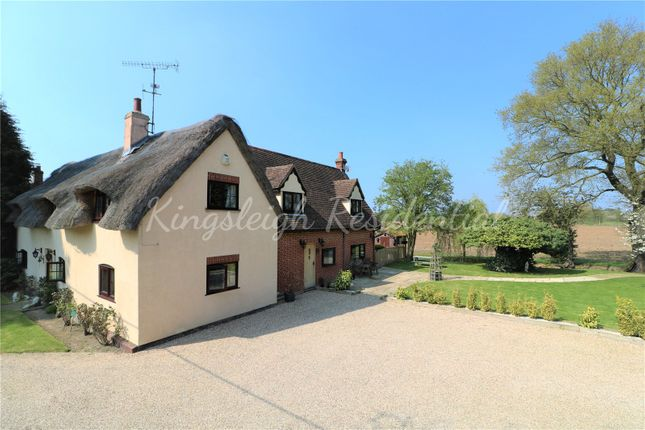 Thumbnail Detached house for sale in Chapel Lane, Great Bromley, Colchester, Essex