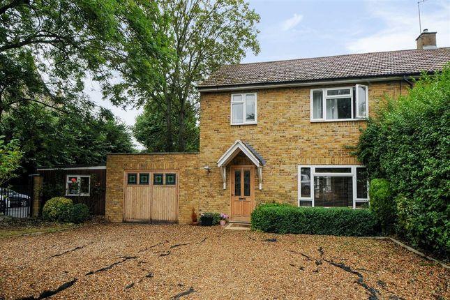 Thumbnail Semi-detached house to rent in Burston Villas, London