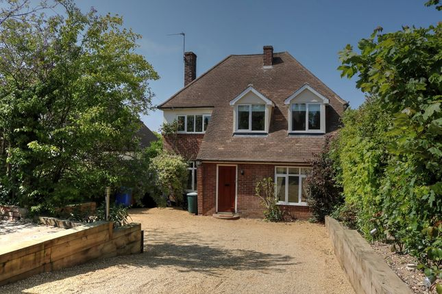 Thumbnail Detached house for sale in Poplar Avenue, Norwich