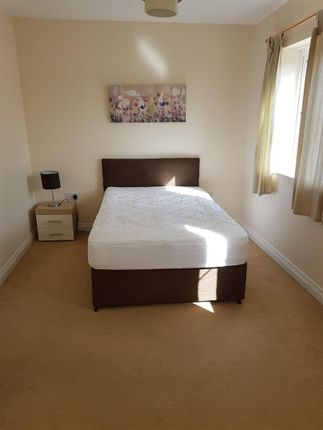 Thumbnail Property to rent in Chillingham Drove, Bridgwater