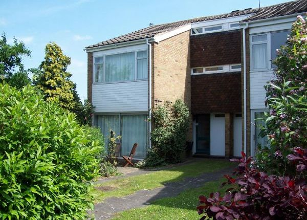 Thumbnail Terraced house to rent in Buckingham Gardens, West Molesey