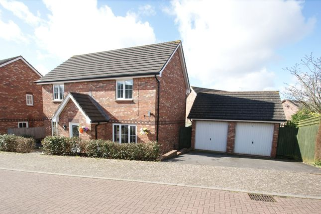 Thumbnail Detached house for sale in Cambrian Close, Paignton