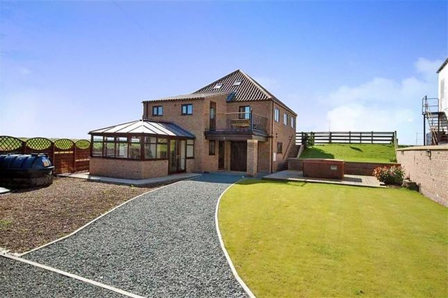 Thumbnail Detached house for sale in Main Street, Blacktoft, Goole