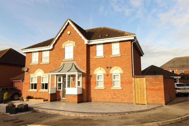 Thumbnail Detached house for sale in Lavender Close, Lutterworth